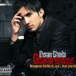 عکس و بیوگرافی احسان غیبی