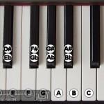 کلیدهای سیاه پیانو